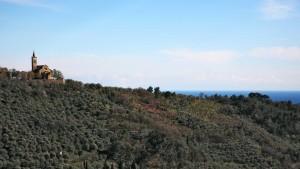 201505-montegrazie